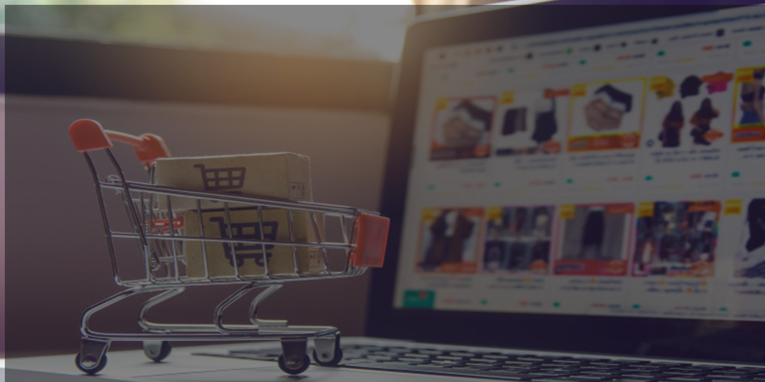 Ecommerce-virtual-tienda-virutal-presencia-en.internet-catalogo-de-productos